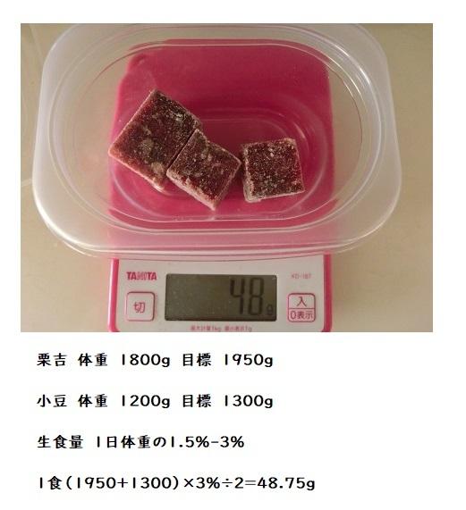 CIMG6651 馬生食 2