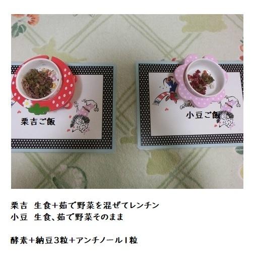 CIMG6641 栗吉&小豆ご飯 3