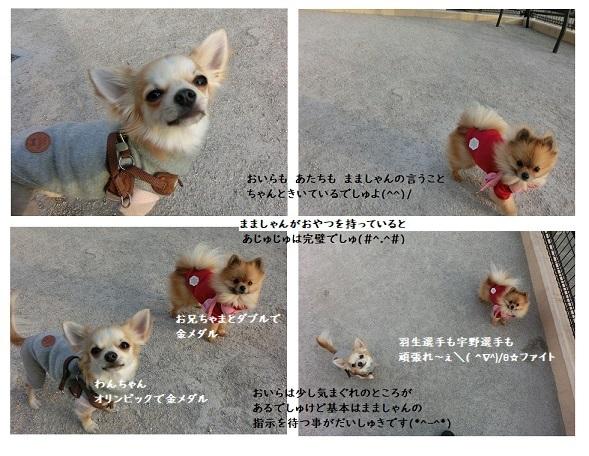 CIMG6758 栗吉あずき ファイト