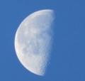 IMG_6811朝の月