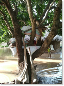 DUItrm_W4AA2Dipモザンビーク北部の洪水