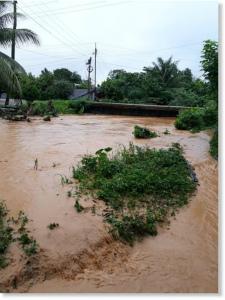 floods_morales_izabalグアテマラ