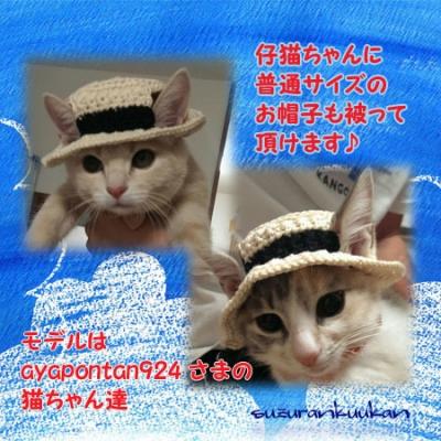 仔猫が普通サイズの帽子を被った例