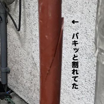 1_201801281700085f5.jpg