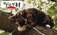 B-miya.jpg