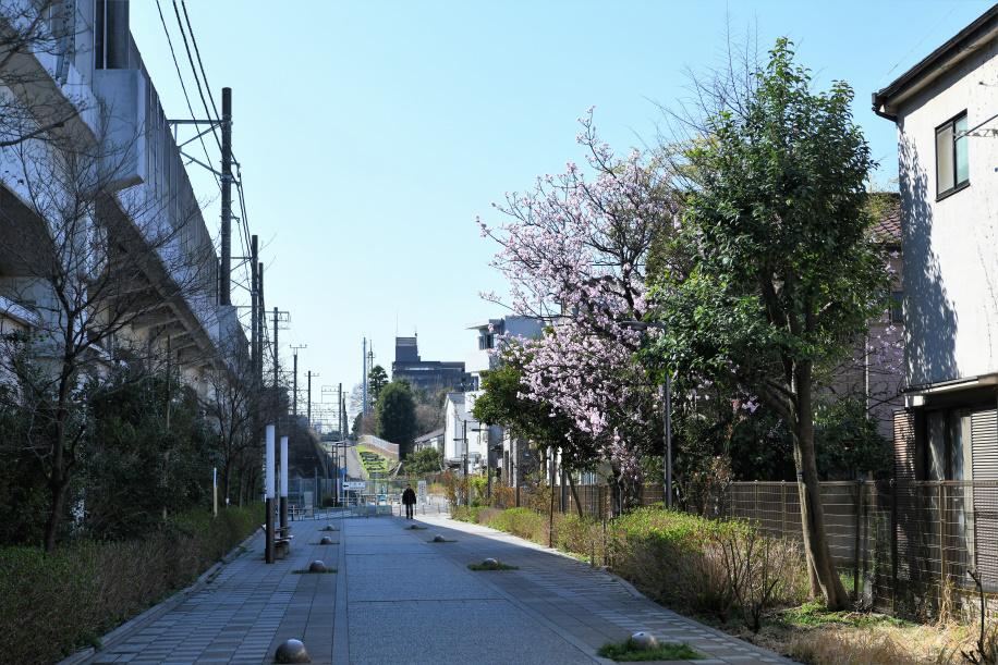 埼京線に沿う遊歩道