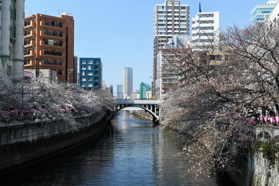 目黒太鼓橋上から上流目黒新橋方向を望む