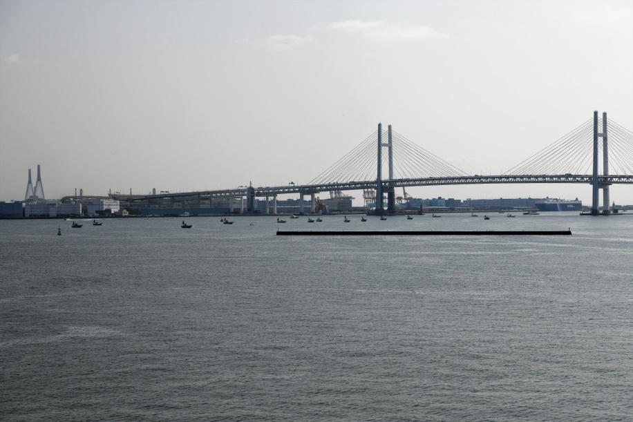 港内の釣り船群