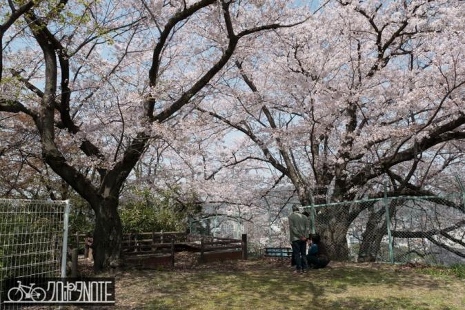 丸子谷公園
