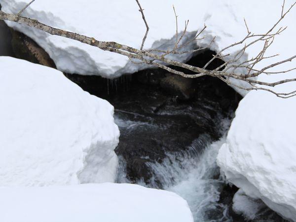2018onogawafudoudaki-snowsyu8-web600.jpg