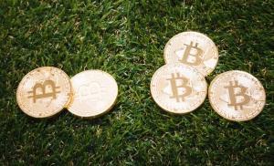 ビットハンター BitHunters トークン 大学生 仮想通貨