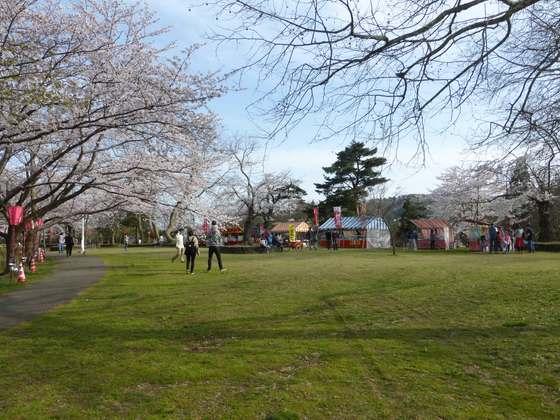 山頂の芝生広場にはお花見シーズンになると出店が並ぶ