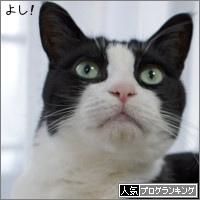 dai20180305_banner.jpg