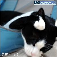 dai20180307_banner.jpg