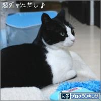 dai20180308_banner.jpg