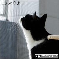 dai20180315_banner.jpg