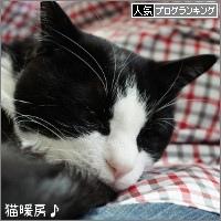 dai20180323_banner.jpg