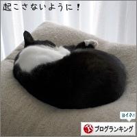 dai20180327_banner.jpg