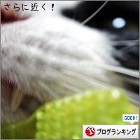 dai20180328_banner.jpg