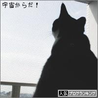 dai20180330_banner.jpg