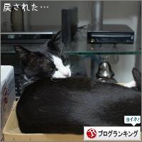 dai20180402_banner.jpg