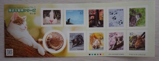 62円バージョン