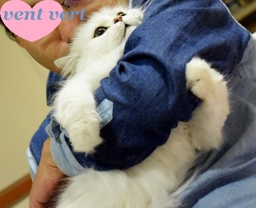 抱きしめ1