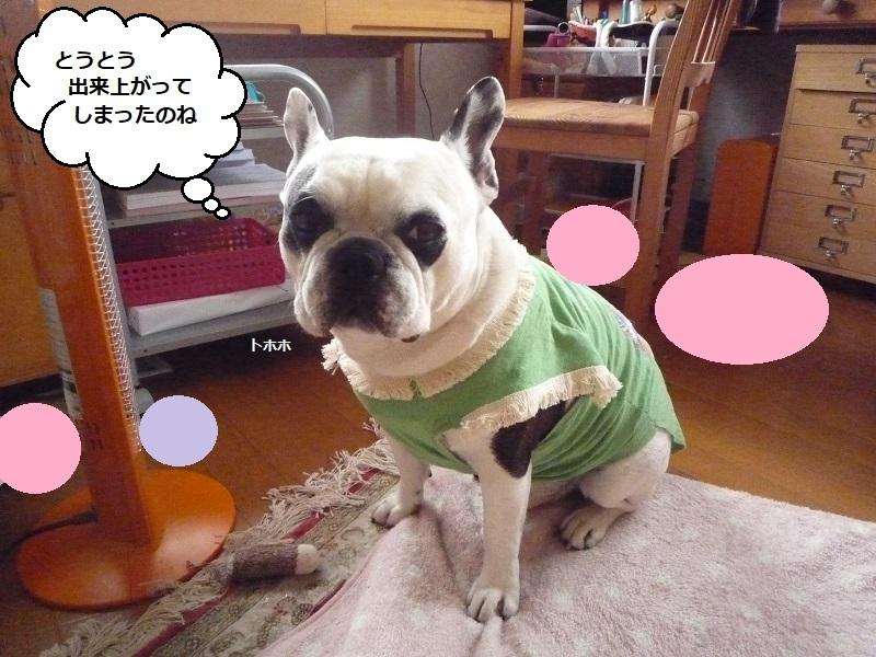 にこら201011to201108 2676