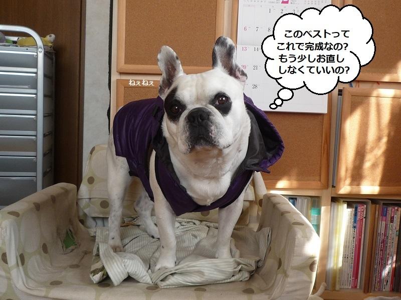にこら201011to201108 2642