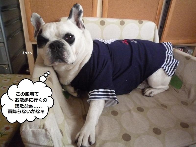 にこら201011to201108 2712