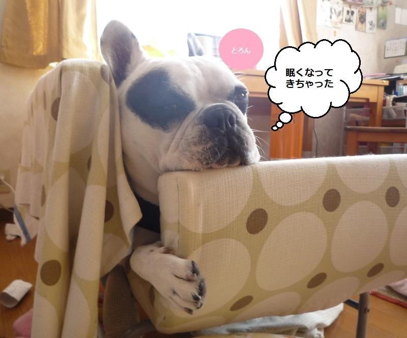 にこら201011to201108 2732