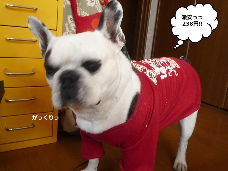 にこら201011to201108 2740