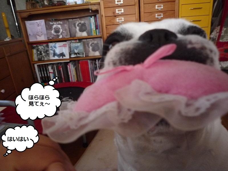 にこら201011to201108 2751