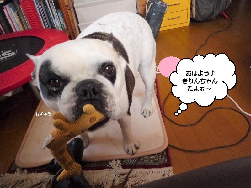 にこら201011to201108 2756 (2)