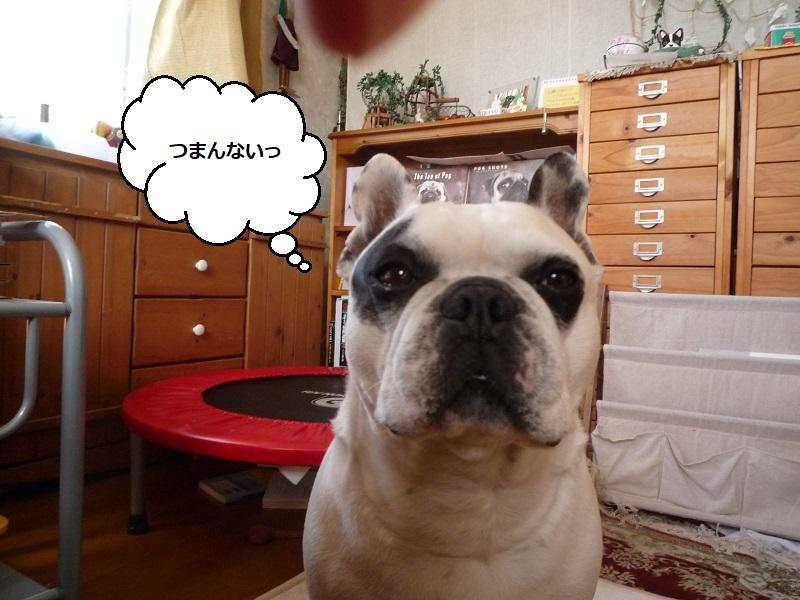 にこら201011to201108 2759