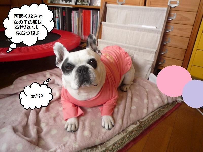 にこら201011to201108 2781