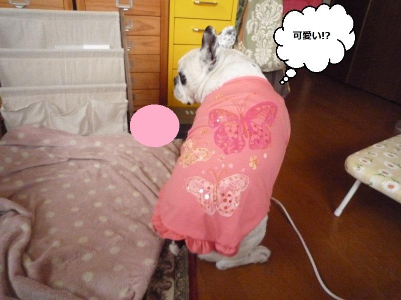 にこら201011to201108 2785
