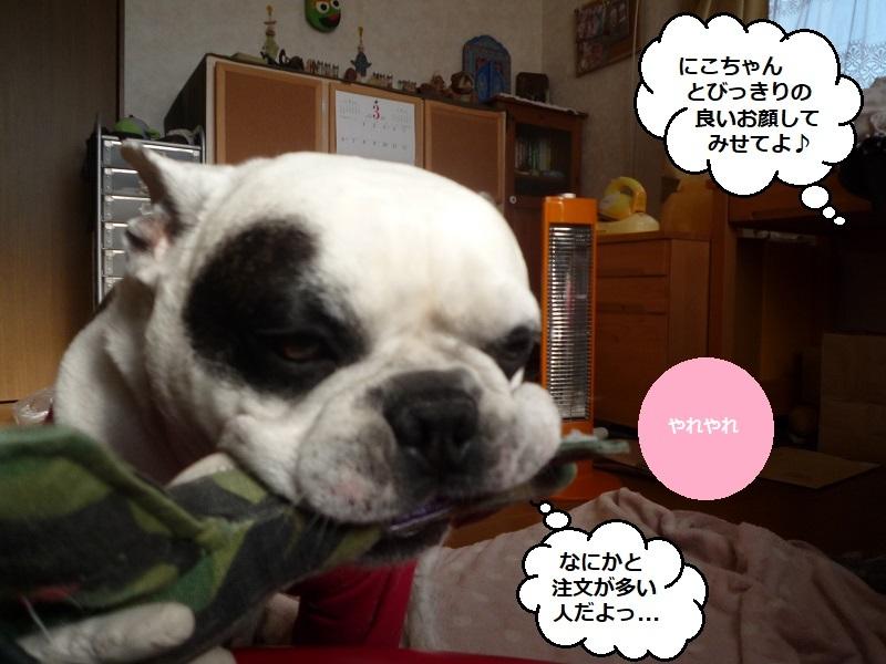 にこら201011to201108 2795