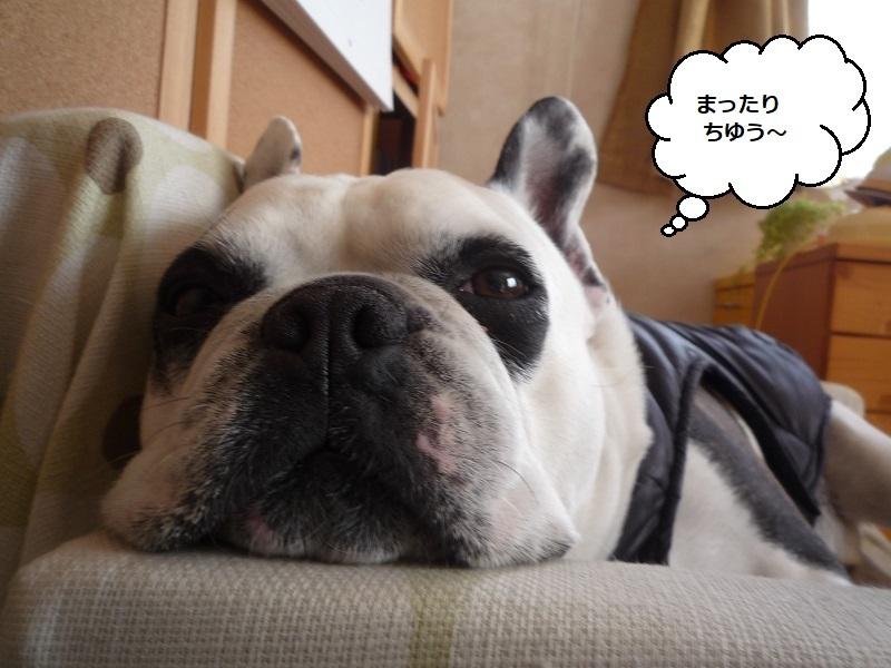 にこら201011to201108 2805