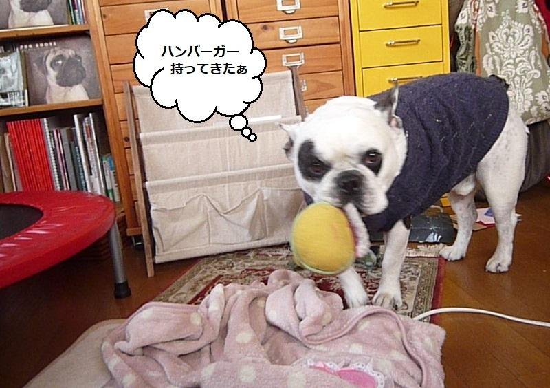 にこら201011to201108 2812