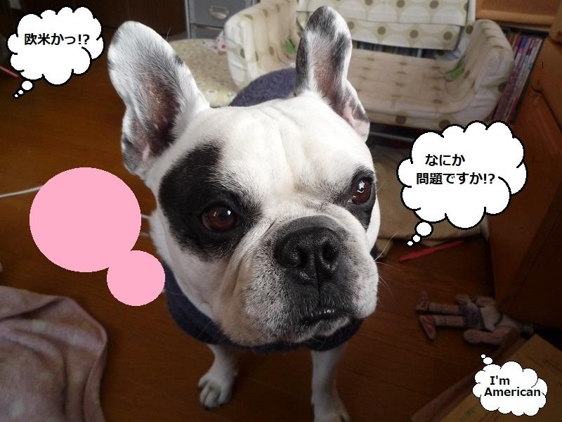 にこら201011to201108 2816