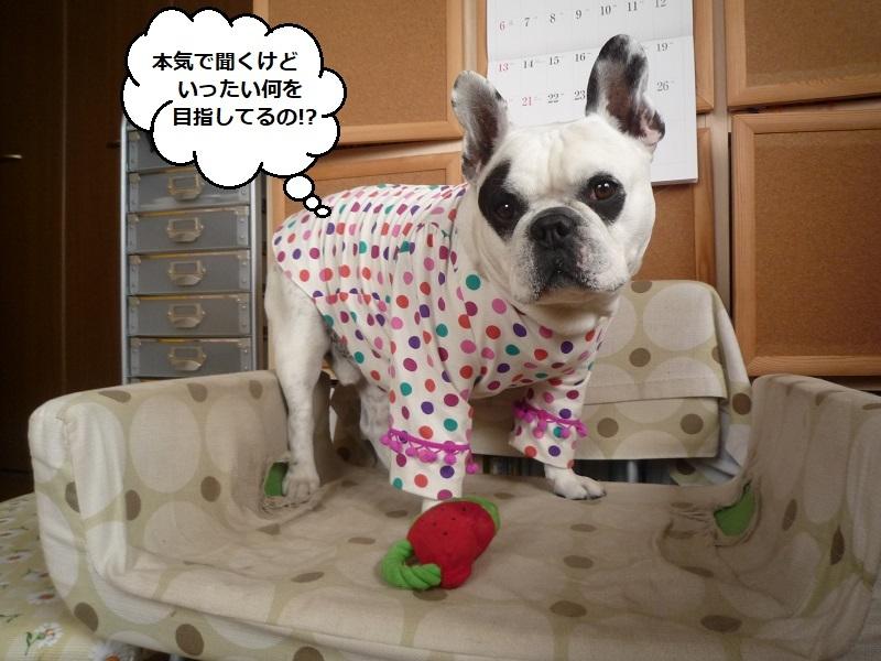 にこら201011to201108 2821