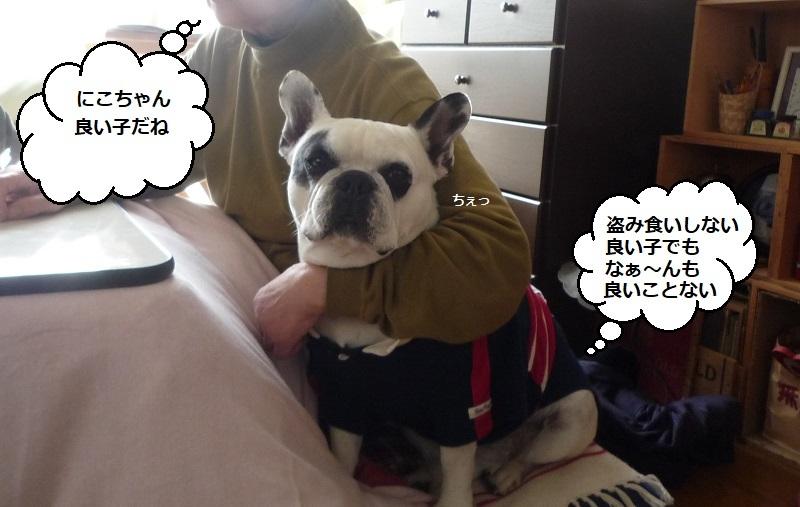 にこら201011to201108 2842