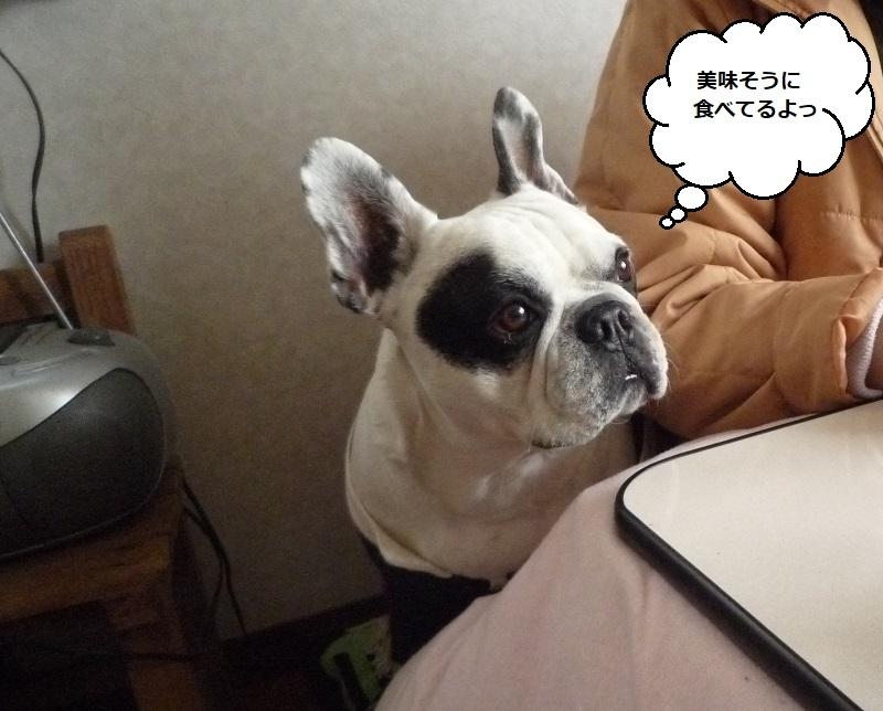 にこら201011to201108 2844