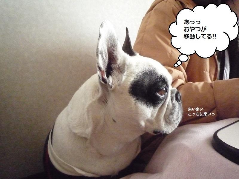 にこら201011to201108 2852