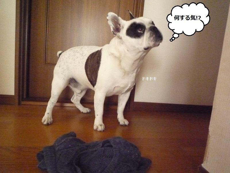 にこら201011to201108 2860