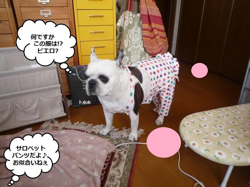 にこら201011to201108 2891