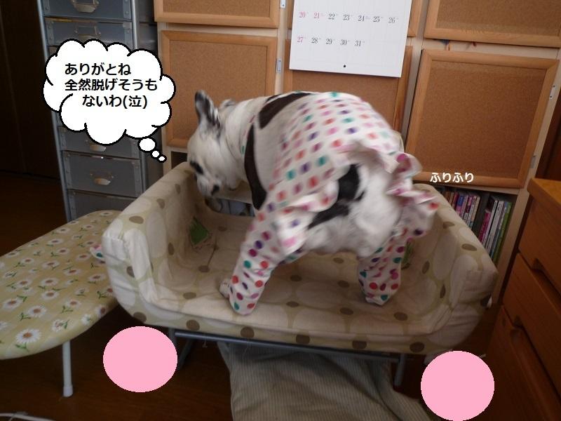 にこら201011to201108 2893