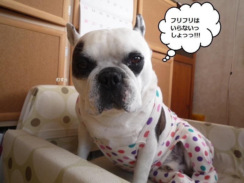にこら201011to201108 2895