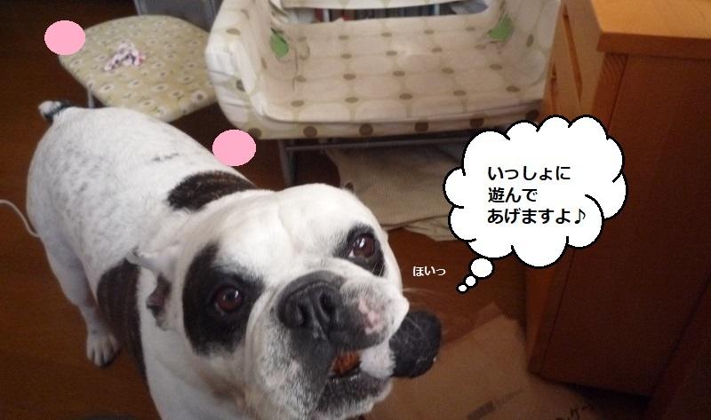 にこら201011to201108 2879